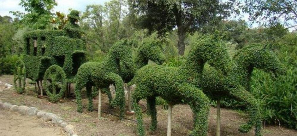 Carro-de-caballos-en-el-bosque-encantado-Destino-y-Sabor